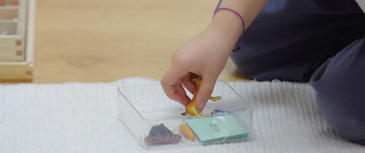 Montessori materials support children's need to feel, smell, manipulate, and hear